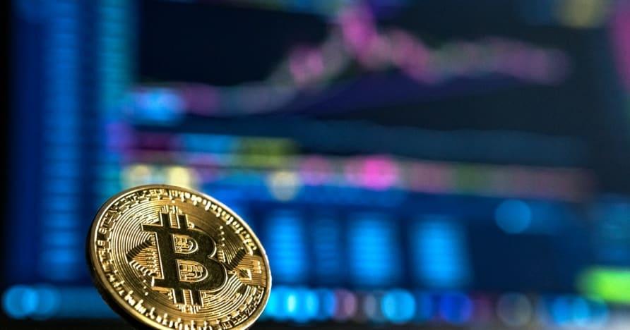 Hra Blackjack s bitcoinmi Stojí to za to?